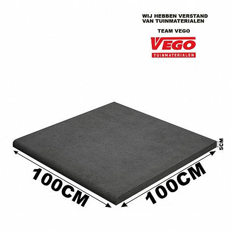 Schellevis Zwembadrand (100x100x5cm) Carbon