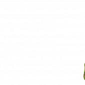 Schroefdraad met karabijnhaak M12 x 14 cm.